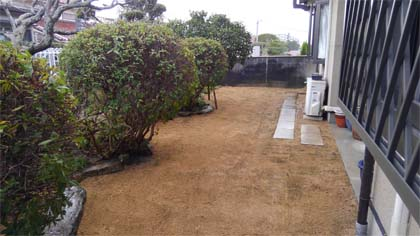 芝張り後2