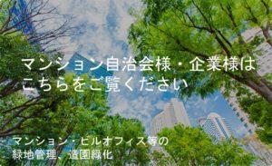 大阪市の植木屋