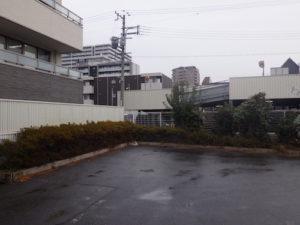 大阪市城東区剪定前