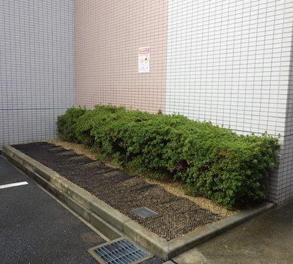 大阪市城東区猫対策後